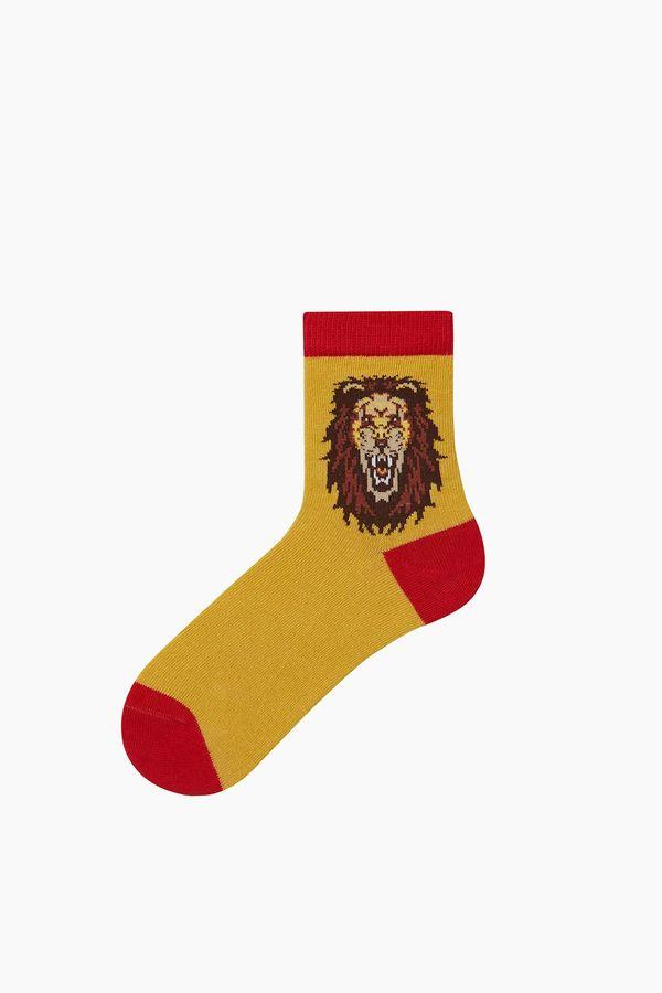 Bross Taraftar Desenli Çocuk Çorabı