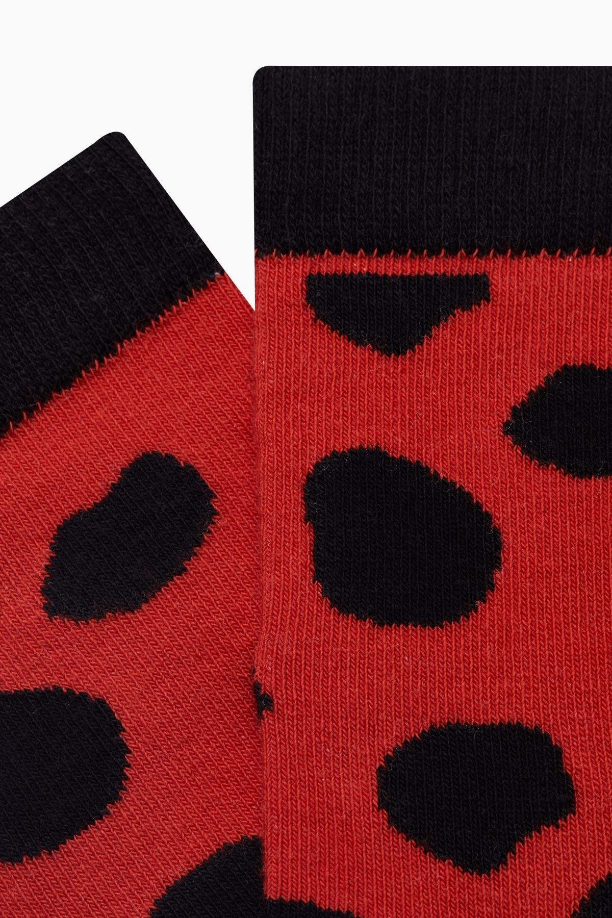 Uğur Böceği Desenli Kadın Çorabı